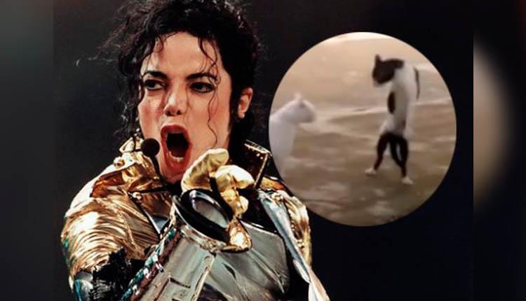 Gatito que 'imita' los pasos de baile de Michael Jackson te sacará más de una carcajada