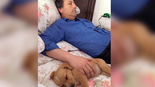 padre no quería perros en la casa