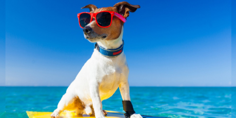 Tener 8 días de vacaciones es más que suficiente, según investigación