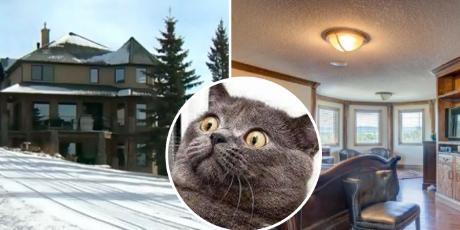 Mujer sortea su casa valorizada en más de un 1 millón de dólares al no encontrar comprador
