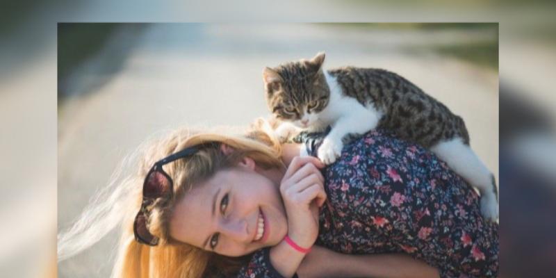 Los gatos prefieren la compañía de una persona que la comida, según investigación