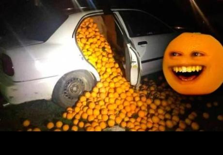 Se roban 4 toneladas de naranjas, la policía los detiene; querían usarlas para esto