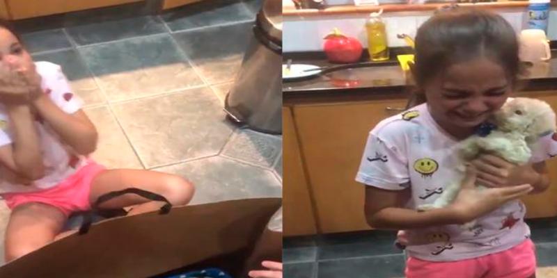 Niña recibe un cachorro como regalo y su reacción ha conmovido a todos