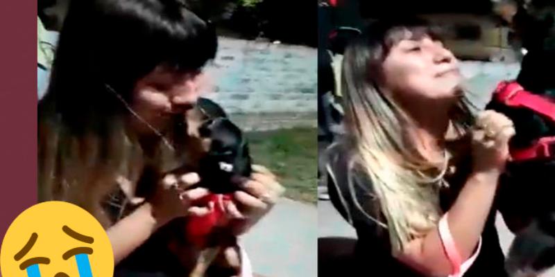 Joven tiene emotivo reencuentro con su mascota tras un mes de extraviada