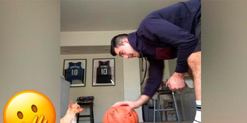 Perro consigue pararse sobre una pelota y sorprende a miles de personas