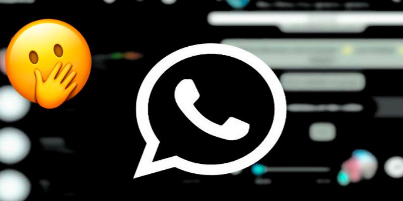 WhatsApp sorprende a sus usuarios con nuevas funciones