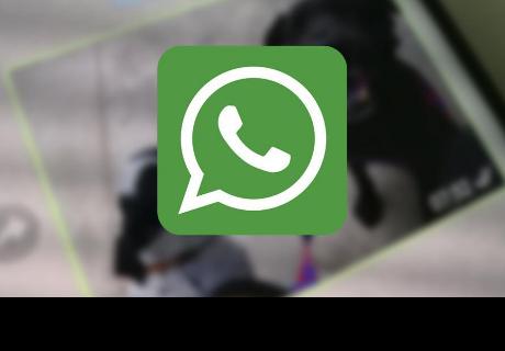 Con este truco podrás recuperar fotos y vídeos de borrados de WhatsApp