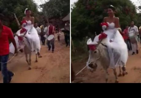 Novia llegó en burro a iglesia y todos se burlan por boda de bajo presupuesto