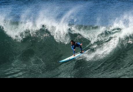 Delfines cogen una ola y derriban a un surfista en Australia