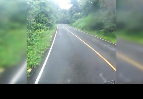 Manejaba por autopista solitaria y nunca imaginó encontrar aterradora escena