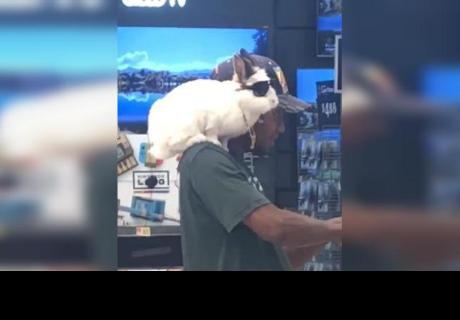 Hombre ingresa a tienda con conejo en el hombro y se vuelve viral por este detalle