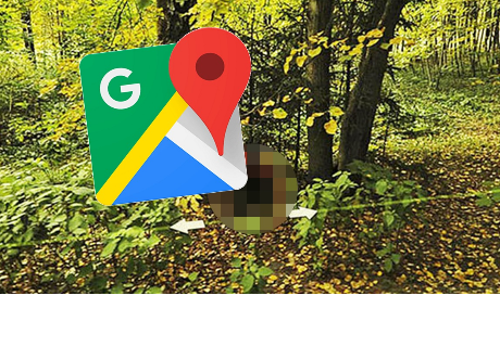 Google Maps: imagen captada en medio del bosque causa desconcierto
