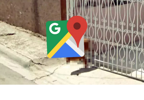 Google Maps capta a tierno perrito en un fallido intento de escape