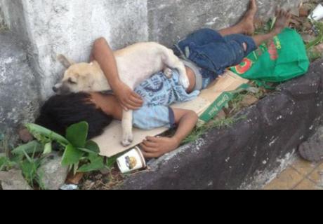 Niño adopta a perro callejero y su amistad conmueve a todos