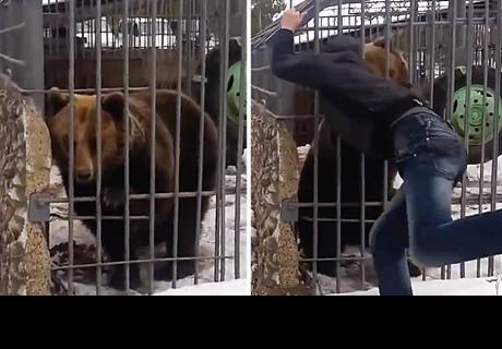 Hombre en estado de ebriedad decide acariciar a un oso