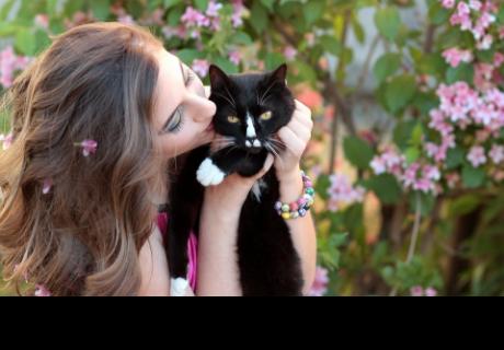 Mujeres que viven con gatos son más inteligentes y emprendedoras, según estudio