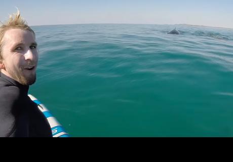 Un tablista graba su inesperado encuentro con dos ballenas y sorprende a todos