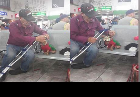 Anciano lleva a su cachorro de viaje y enternece las redes