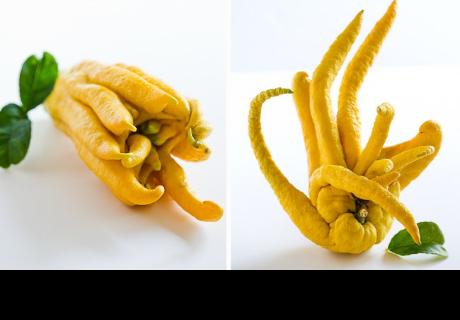 Las 10 frutas exóticas más fascinantes del mundo
