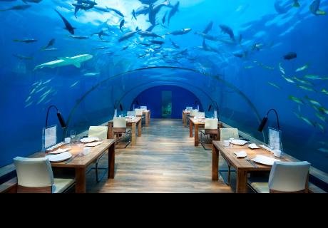 Estos son los 6 restaurantes marinos más geniales