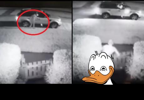 Un 'ninja' mostrándolo 'todo' impide que un ladrón le robe el auto