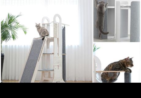 Diseñan un sistema de entretenimiento para los gatunos