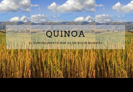 El superalimento que está cambiando la vida de los agricultores de Perú