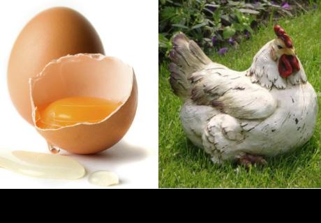 ¿Qué fue primero, el huevo o la gallina? Duda resuelta