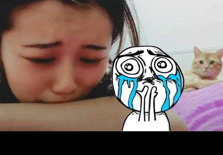 Gato consuela a su dueña al verla llorar