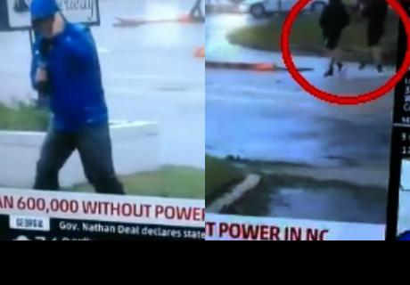 Reportero planta cara al huracán, pero dos tranquilos transeúntes arruinan la escena