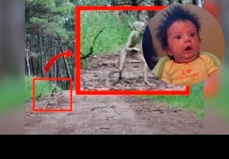 Extraterrestre captado en un bosque estadounidense te dejará con los 'pelos de punta'