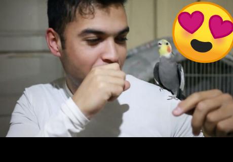 Hombre hace beatbox junto a tierna ave y estallan las redes
