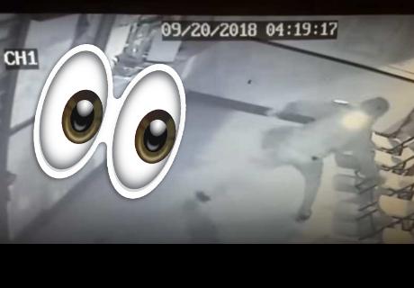 Ladrón intenta romper una vitrina a prueba de balas y se lleva un ladrillazo en la cabeza