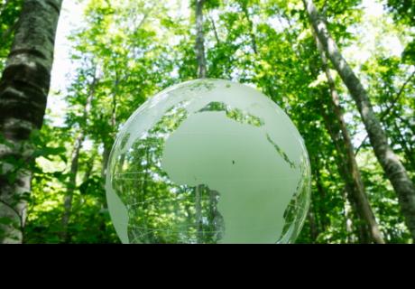 7 cosas que puedes hacer para ayudar al planeta