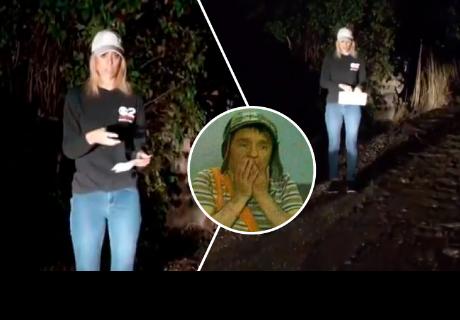 Periodista hacía transmisión en vivo, pero se quedó 'congelada' al ver 'extraña criatura'