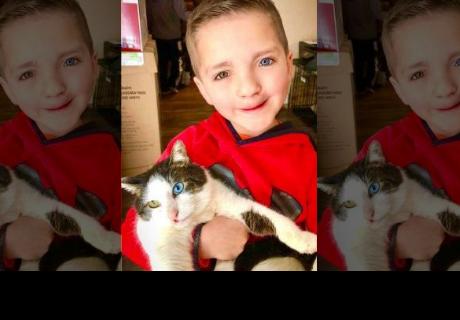 Un niño y un gatito fueron discriminados por lo mismo y ahora son mejores amigos