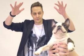 Mira la divertida nueva versión de 'perros reaccionan ante la magia' - VIDEO
