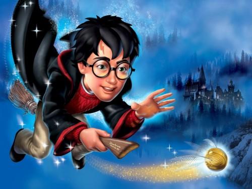 ¿Harry Potter en la vida real? Video causa sensación en Youtube