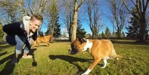 Conoce la historia de Duncan, el cachorro que vive con dos patas  - VIDEO