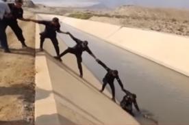 Policía Nacional del Perú rescata a perrito arrastrado en río - VIDEO