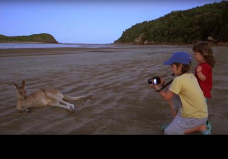 Niño de doce años recorrió el mundo en busca de siete animales en peligro de extinción