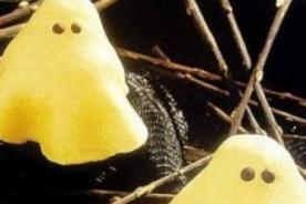 Recetas de postres - fantasmas hecho de pera  para Halloween