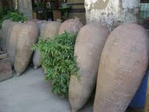 Día del pisco: conoce el origen del pisco peruano