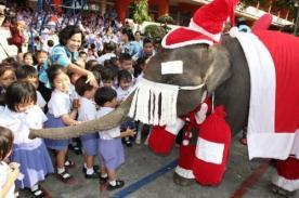 Elefante disfrazado de Papá Noel repartió regalos en Tailandia - Video