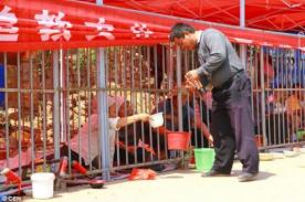 China: encierran mendigos en jaulas para que no molesten a turistas