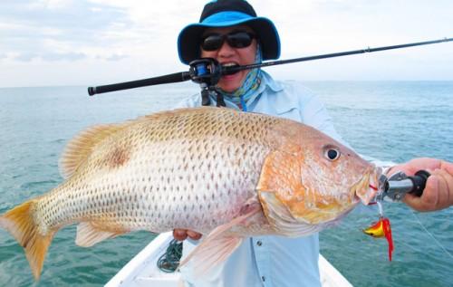 Foto: Este pescado vale 38 mil dólares