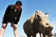 Yao Ming graba documental con guepardos y rinocerontes