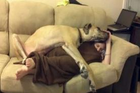 Conmovedor homenaje para su mascota fallecida [VIDEO]