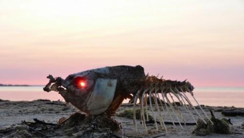 Fotógrafo captó al sol a través de un ojo de pescado