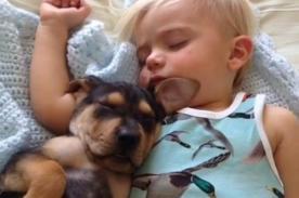 Adorable bebé y perro cachorro enternecen redes sociales - Fotos